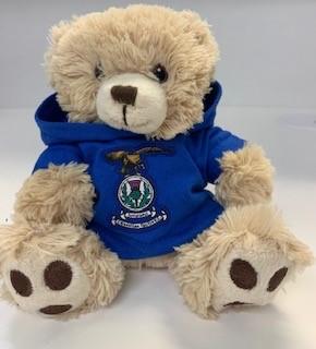 ICTFC Sonny Teddy Bear in hoddie